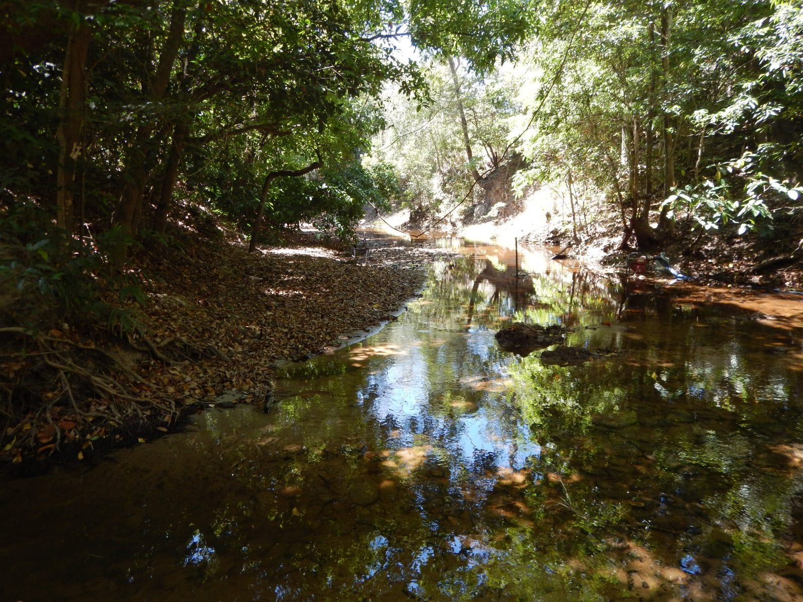 Environment and Water Quality